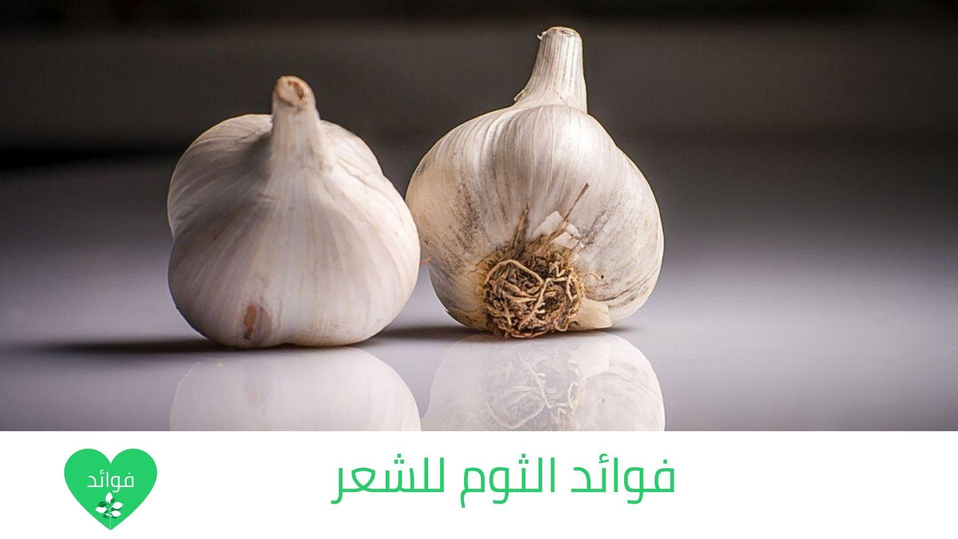 فوائد الثوم للشعر الثوم يعطيك أفضل حماية وجمال وكثافة لشعرك Vegetables Garlic Food