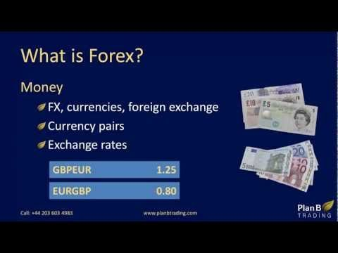 What is forex training