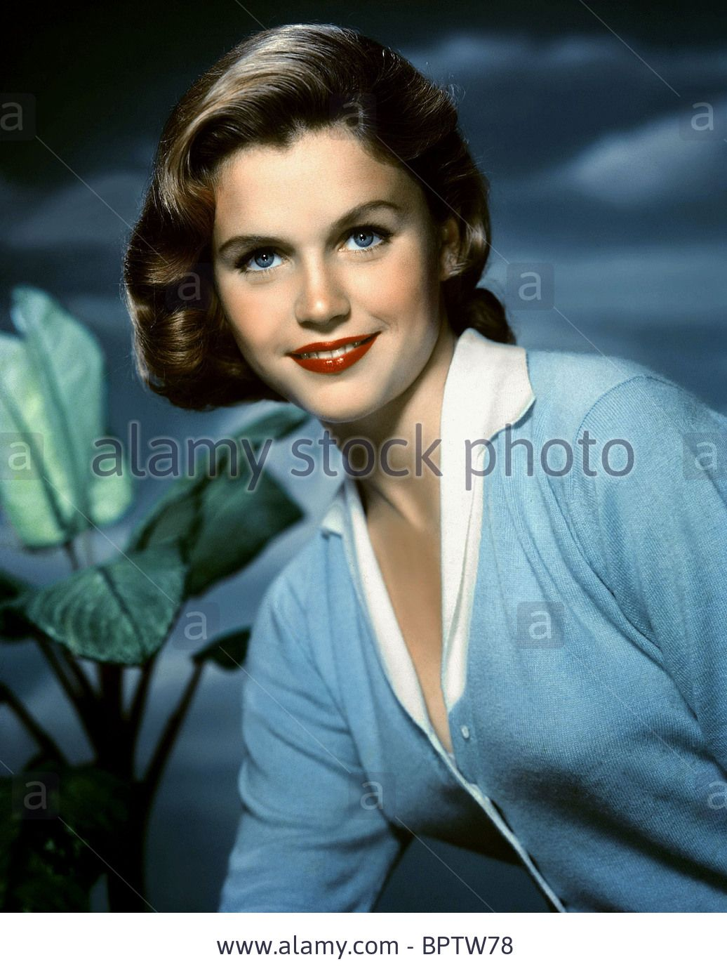 lee remick last photolee remick height, lee remick, lee remick photos, lee remick actress, lee remick cancer, lee remick 1991, lee remick biography, lee remick grave, lee remick go betweens, lee remick the omen, lee remick pictures, lee remick death, lee remick imdb, lee remick estate, lee remick daughter, lee remick net worth, lee remick find a grave, lee remick death picture, lee remick measurements, lee remick last photo