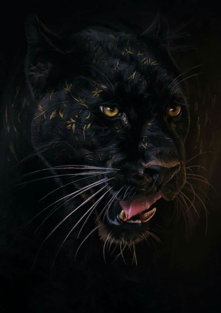 Pin By Lionel Perbet On Art Candy Big Cats Art Black Panther Cat Cat Anatomy