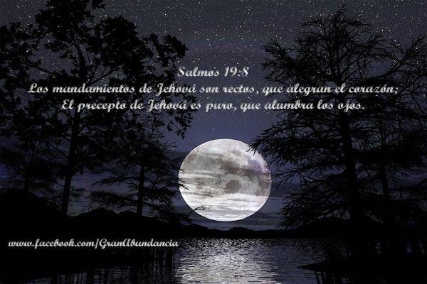 Frases De Amor Perdon Biblico Mesas Pinterest