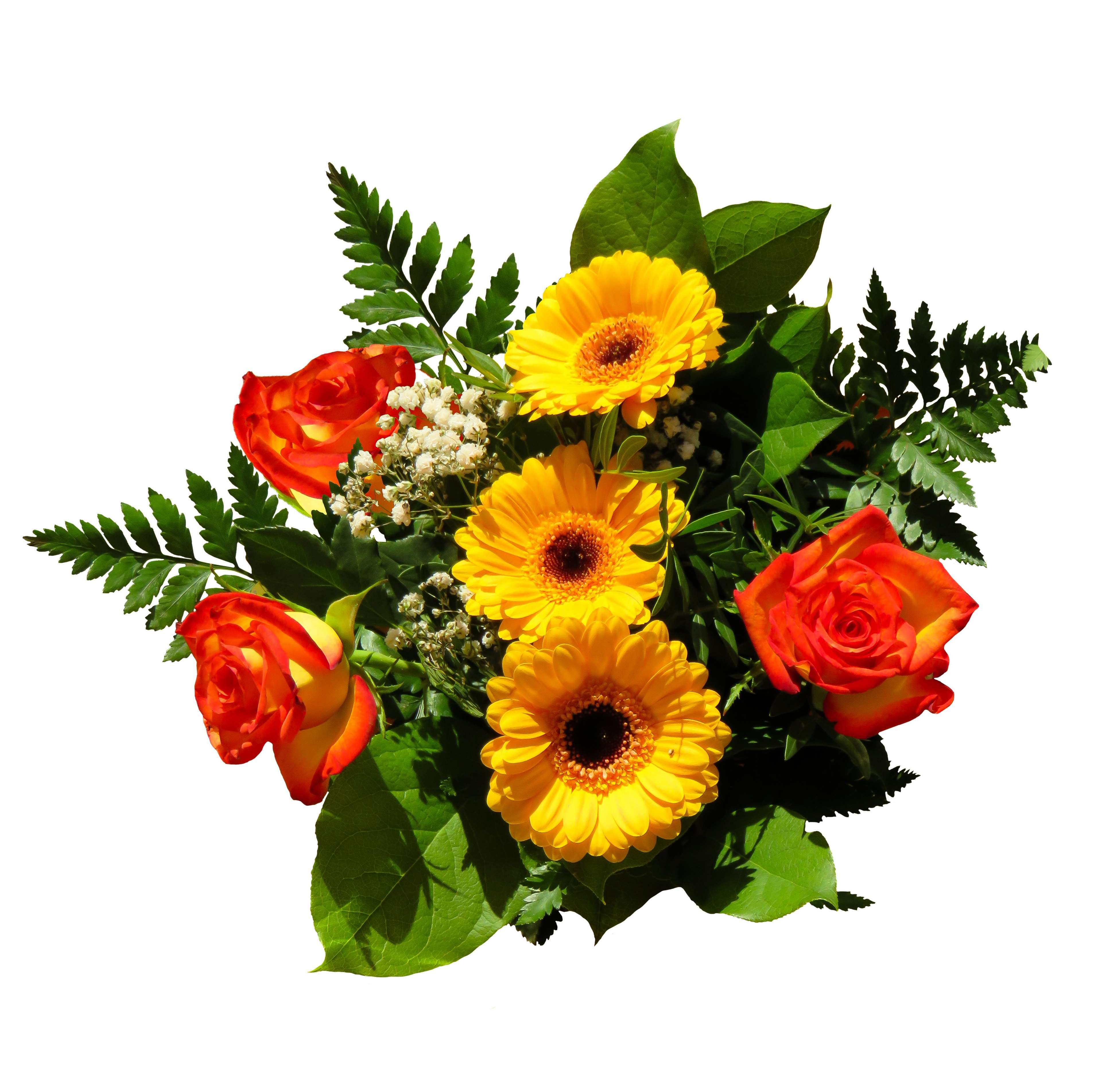 birthday bouquet #bouquet #flowers #gerbera #gift #give #isolated ...