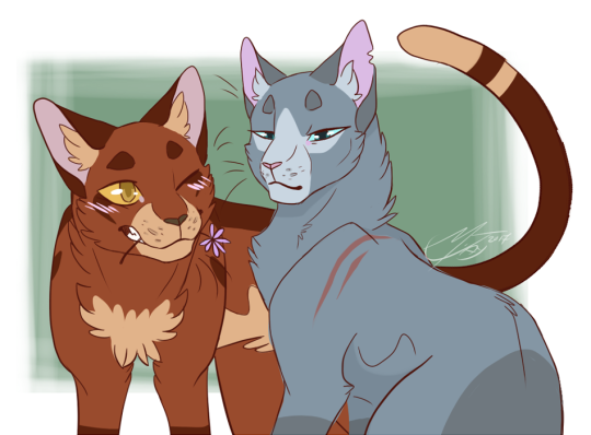 blue star and oakheart warrior cats pinterest