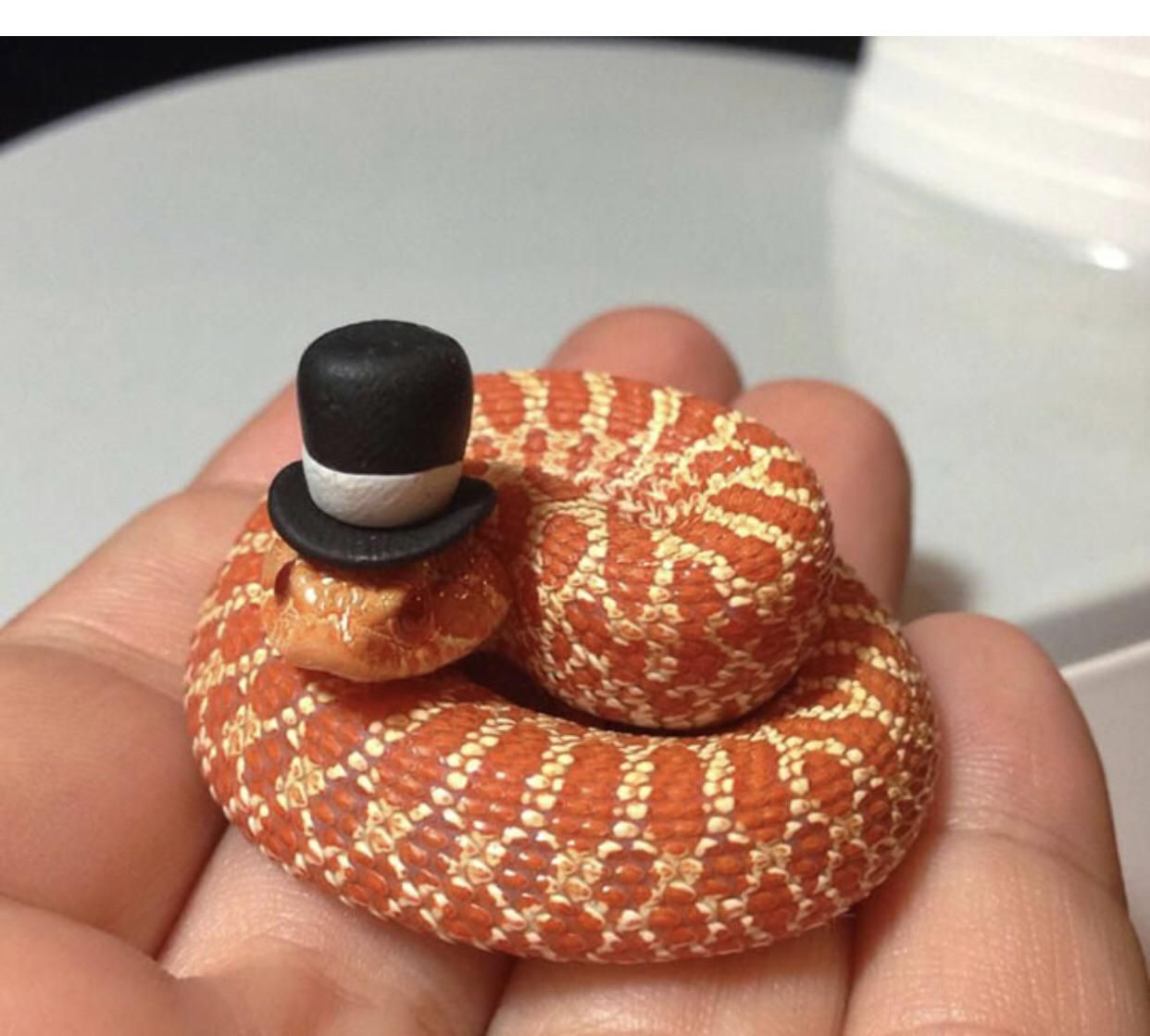 Snakes with hats. Say no more.