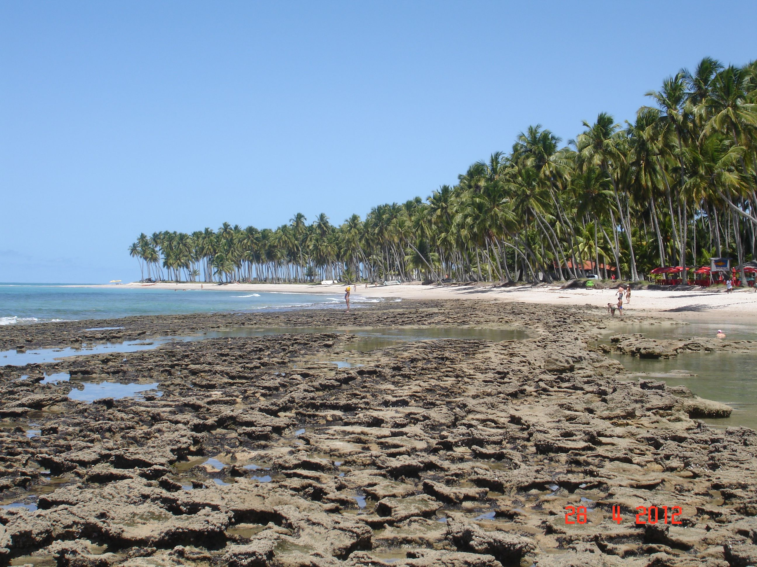 #Beach #Carneiros #Pernambuco #Brazil
