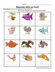mammal fish bird worksheet pinterest worksheets animal classification and life science. Black Bedroom Furniture Sets. Home Design Ideas