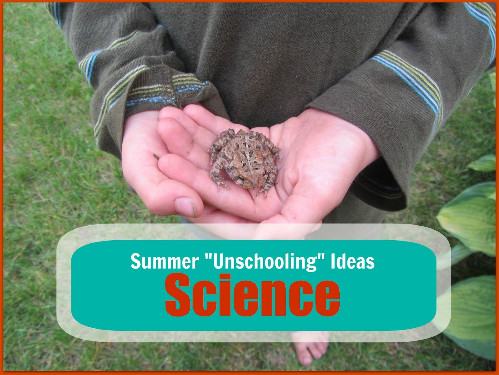 5 Days Of Summer Unschool Science