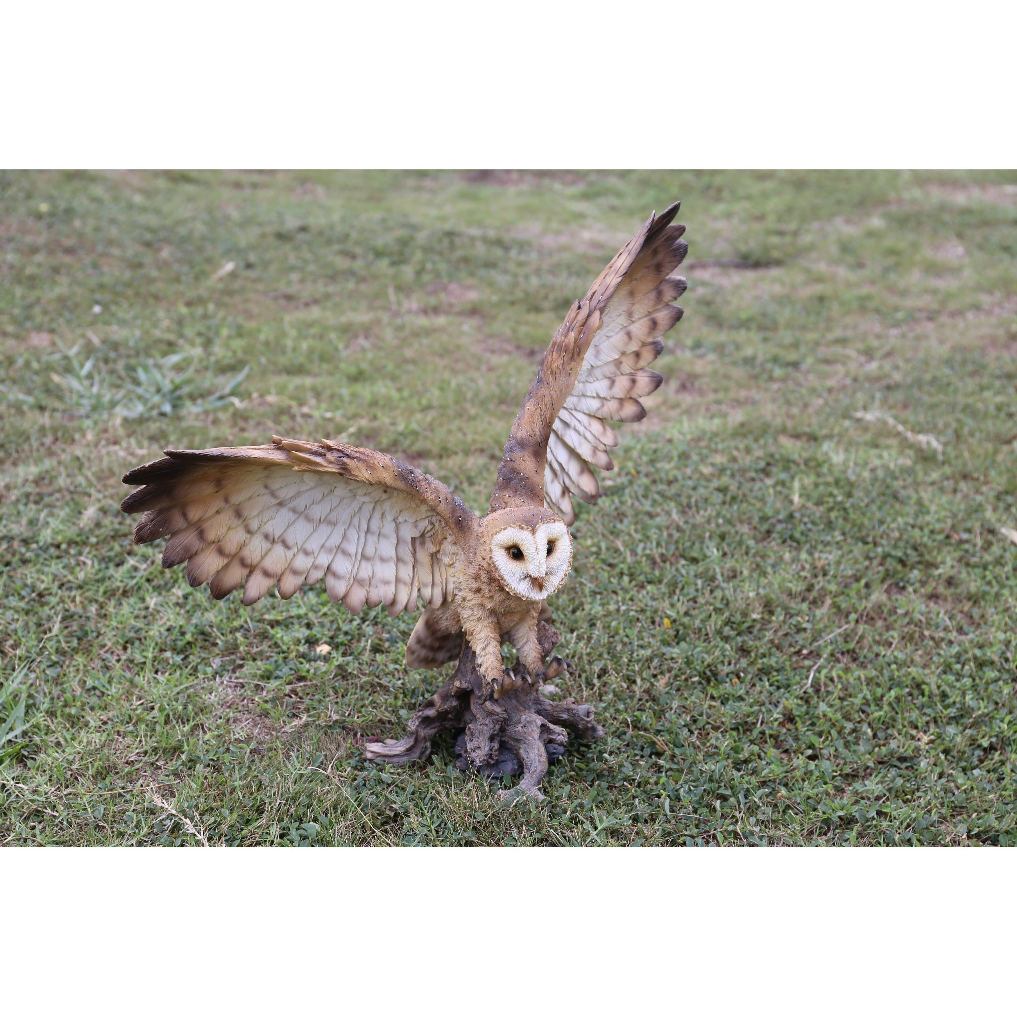 Barn Owl On Stump With Open Wings, Brown(Polyresin ...