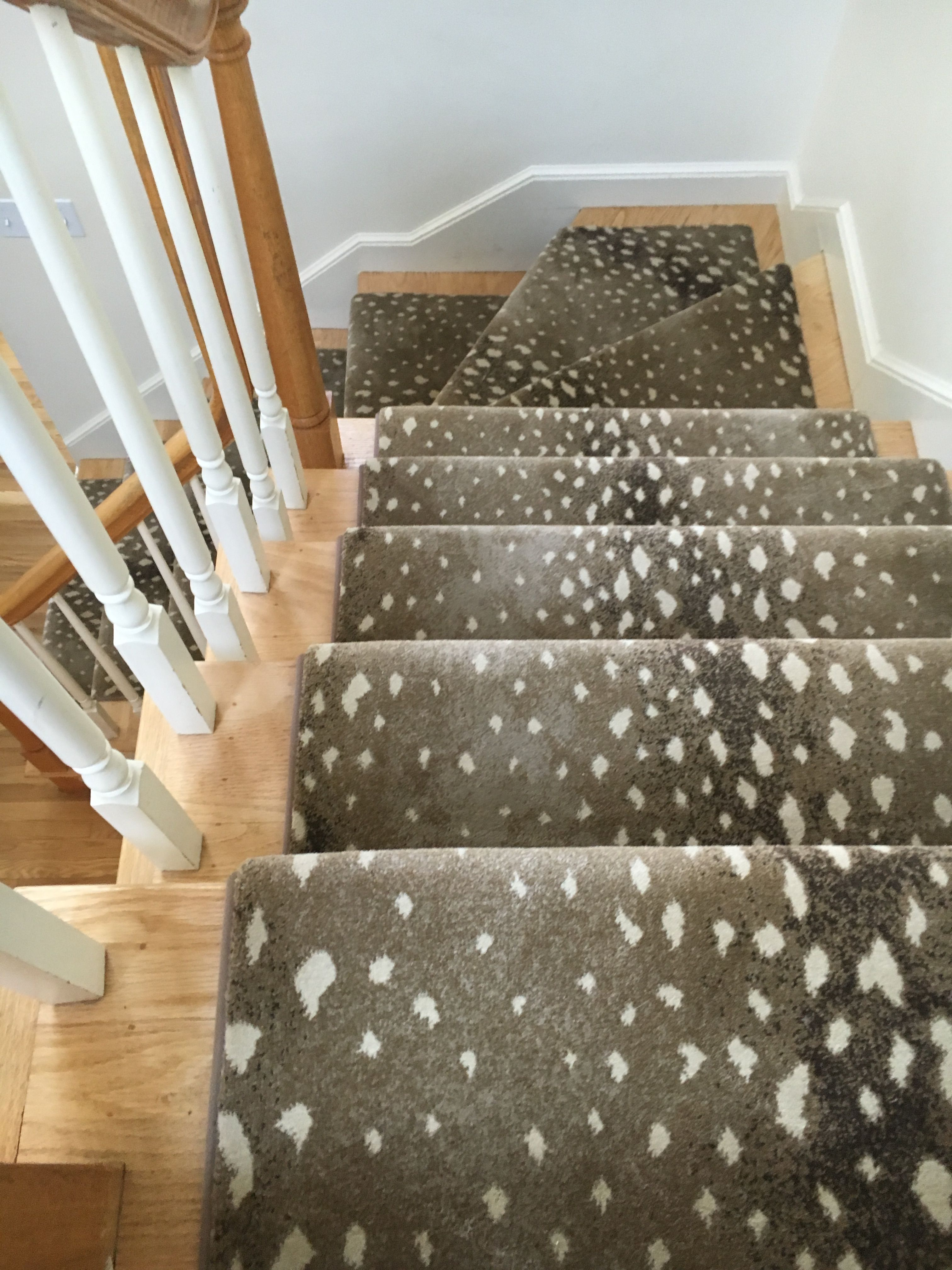 Animal Prints Are A Great Way To Bring Some Life Into A Neutral   Custom Stair Runners Near Me   Flooring   Basement Stairs   Staircase Makeover   Animal Print   Staircase Remodel