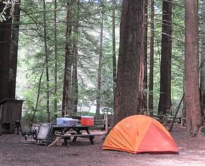 Burlington Campground at Humboldt Redwoods State Park, California -- one of  the best places