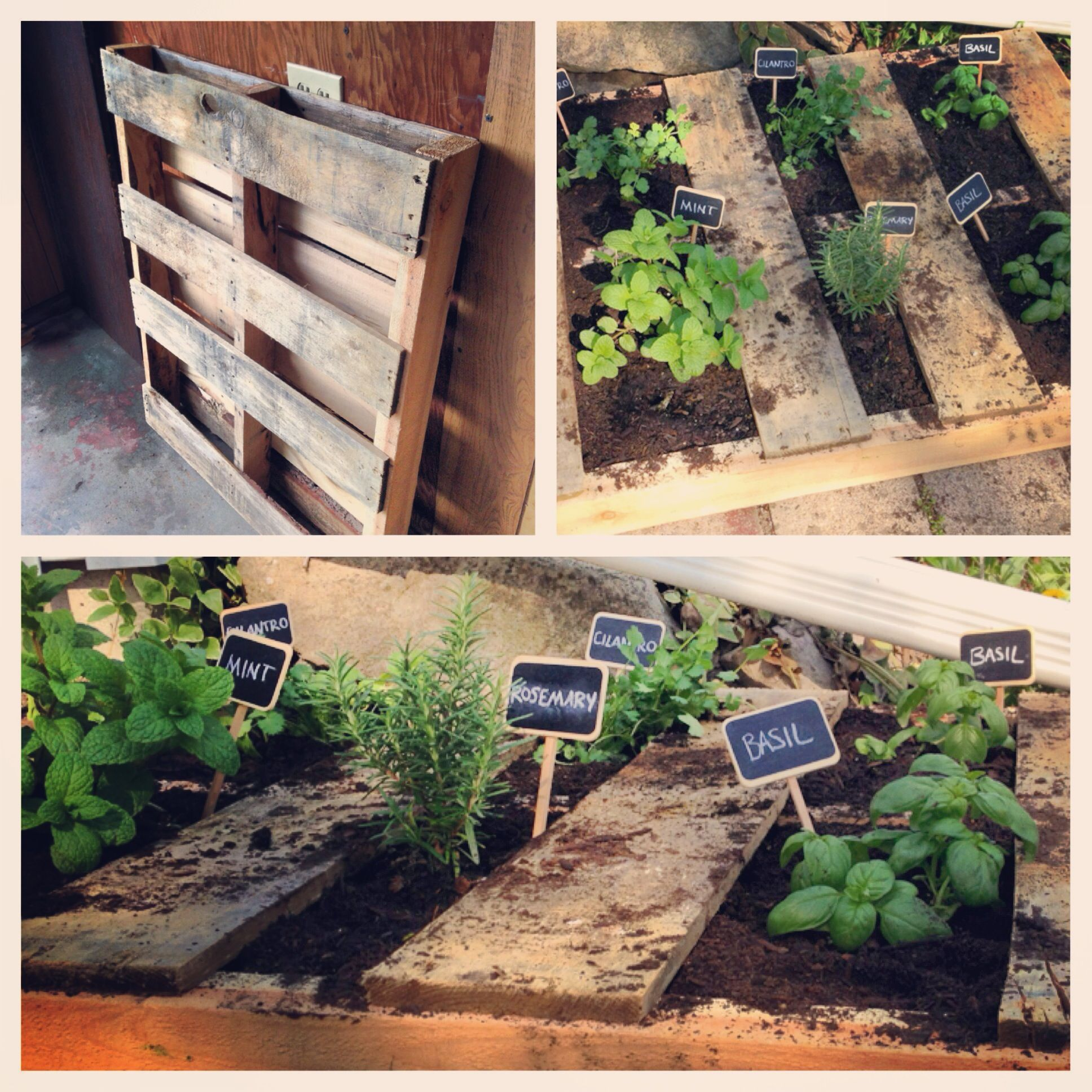 pallet herb garden easy to do urban garden notre bout de jardin pinterest jardins. Black Bedroom Furniture Sets. Home Design Ideas