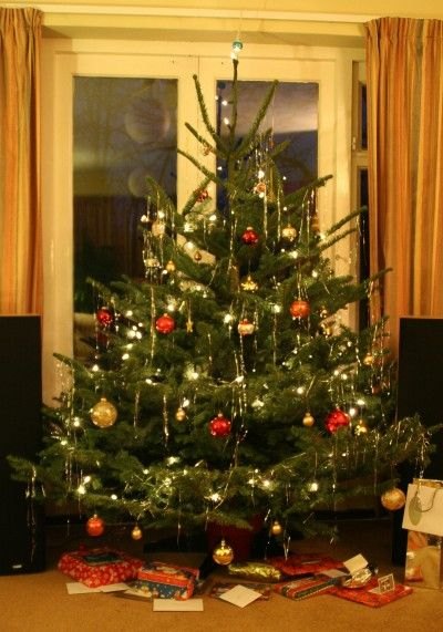 How To Keep A Christmas Tree Alive: Tips For Keeping Your ...