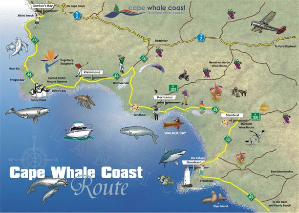 Cape whale coast route map cape town Pinterest Cape Cape town