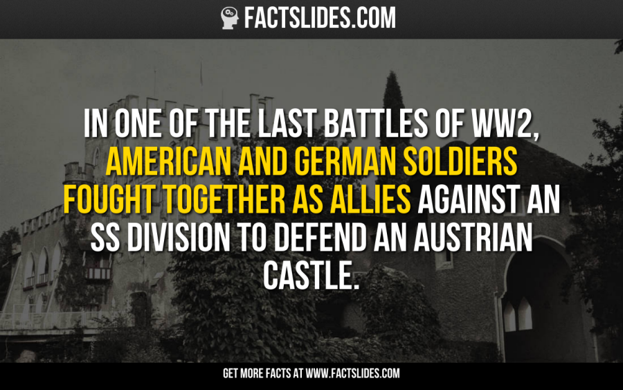 In one of the last battles of WW2, American and German soldiers fought together as allies against an SS division to defend an Austrian castle.