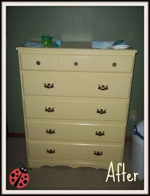 "Copy Cat Design: ""ROAR""some Dresser"