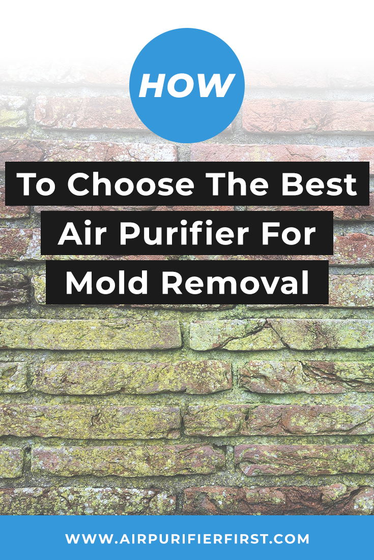 Best Air Purifier for Mold Spores Removal Buying Guide