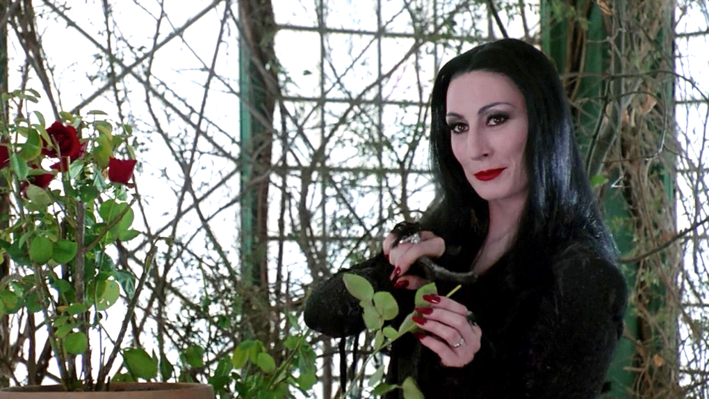 Anjelica Huston, as Morticia, in 'The Addams Family' film (1991). | Morticia addams, Goticas, Diy