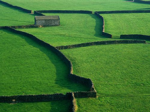 Dry stone walls, Yorkshire Dales