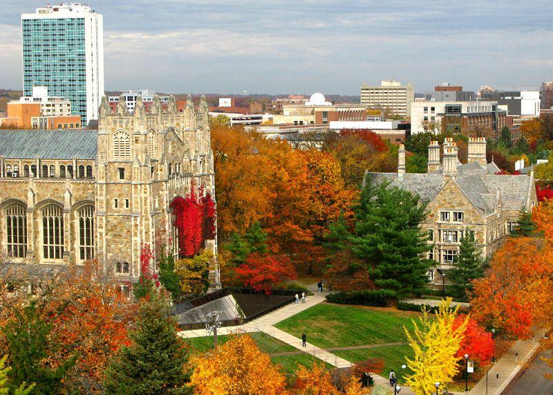 Fall In Ann Arbor Michigan Photo Go Blue University Of Admission Essays Undergraduate Essay