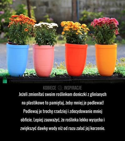 Jezeli Zmienilas Swoim Roslinkom Doniczki Z Glinianych Na Plastikowe To Pamietaj Zeby Mniej Je Podlewac Podlewaj Je Troche Rzadziej Planters Planter Pots Pot