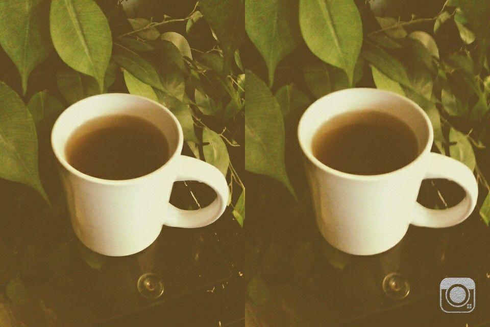 Green tea- fiery ginger and rhubarb (caffeine free)