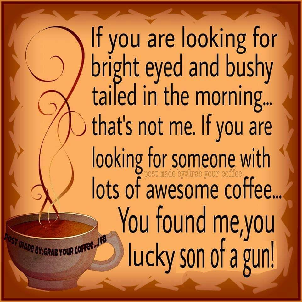 Coffee Quotes Funny Funny Coffee Quote Cartoon Weekday Quotes  Pinterest  Weekday