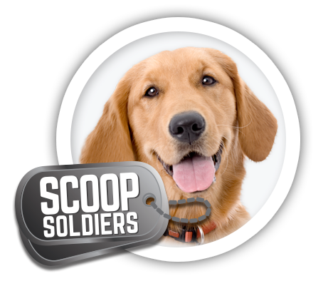 Scoop Soldiers In 2020 Dog Boarding Facility Soldier Pet Ownership