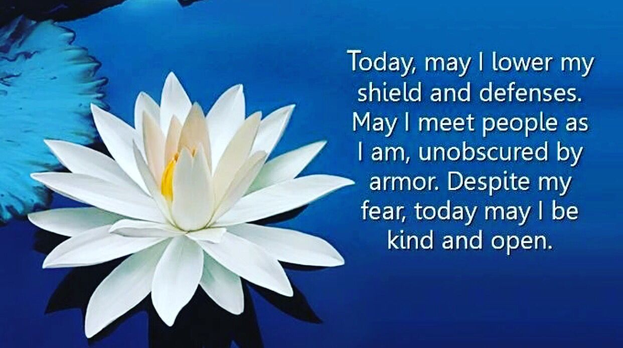 Happy Hindi, Lotus Flower