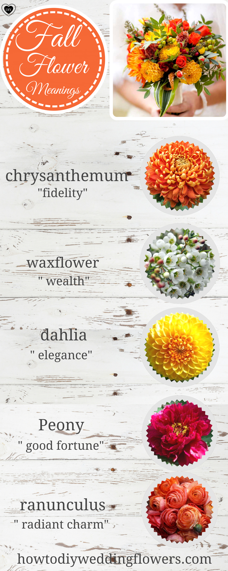Wedding Trends! FALL FLOWERS - Names of the best FALL flowers and ...