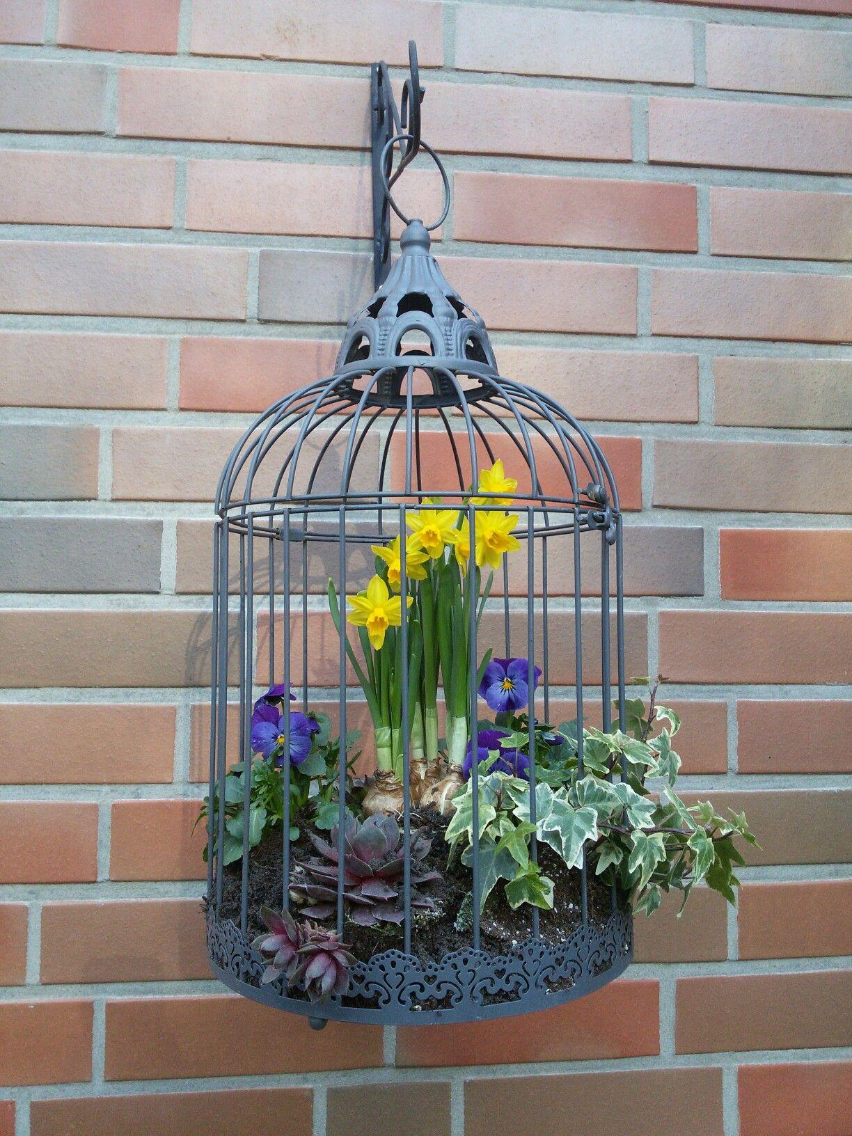 deko vogelk fig eigene kreationen pinterest k fig vogelk fig deko und v gel. Black Bedroom Furniture Sets. Home Design Ideas