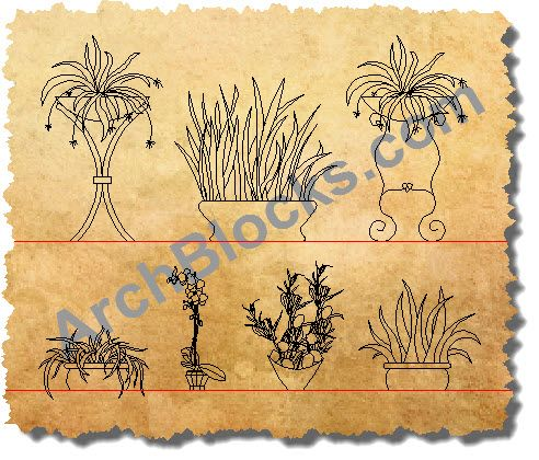 Indoor Plants CAD Symbols