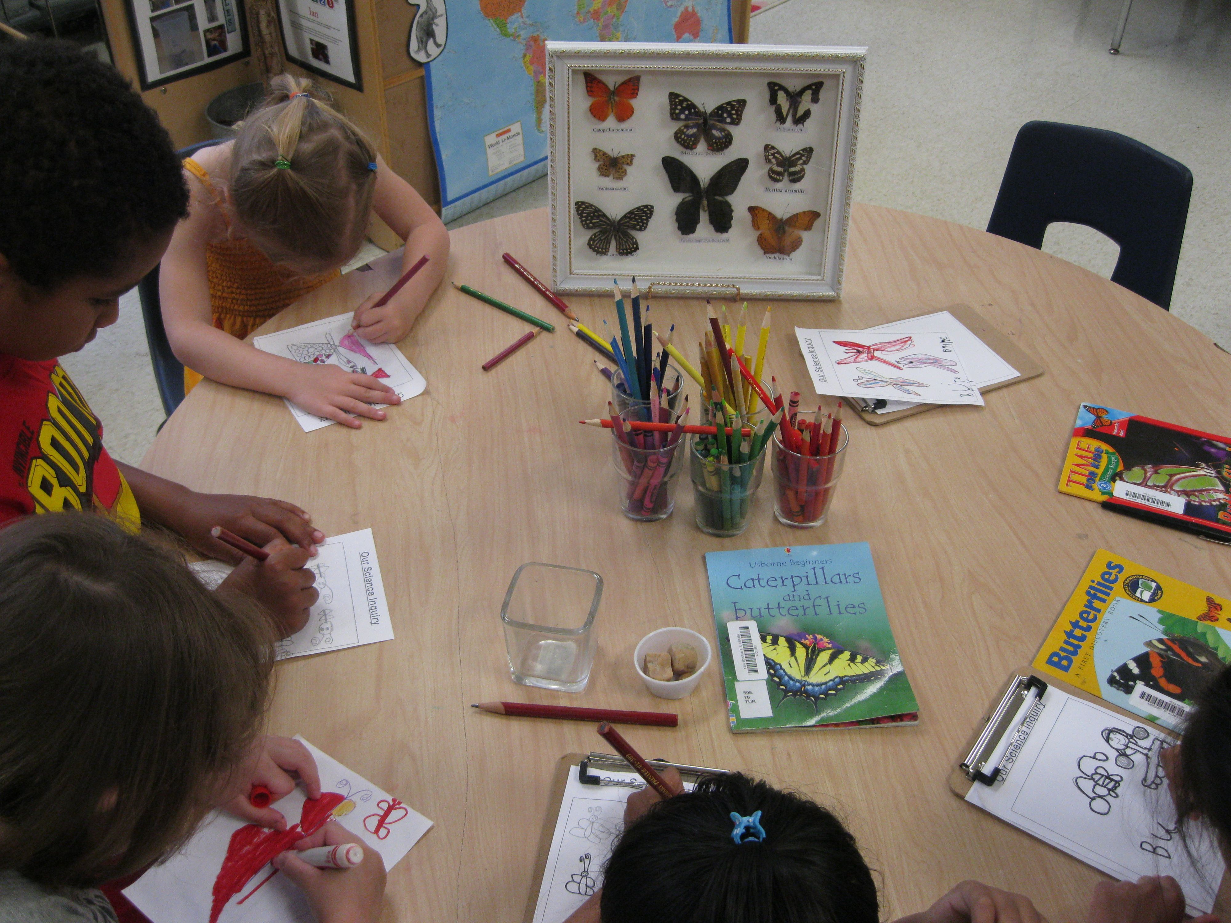 Science Inquiry Project Ideas