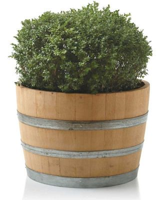 Create Your Own Courtyard Wine Barrel Planter Barrel Planter And