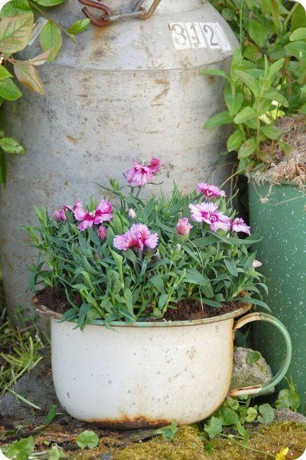 Pin von shelley gaillard auf gardens pinterest for Gartengestaltung joanna