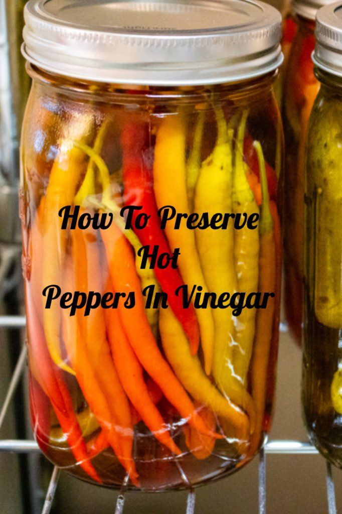 How To Preserve Hot Peppers In Vinegar A Romanian Recipe That Comes From The Old Times These Hot Peppe Stuffed Hot Peppers Hot Pepper Recipes Stuffed Peppers