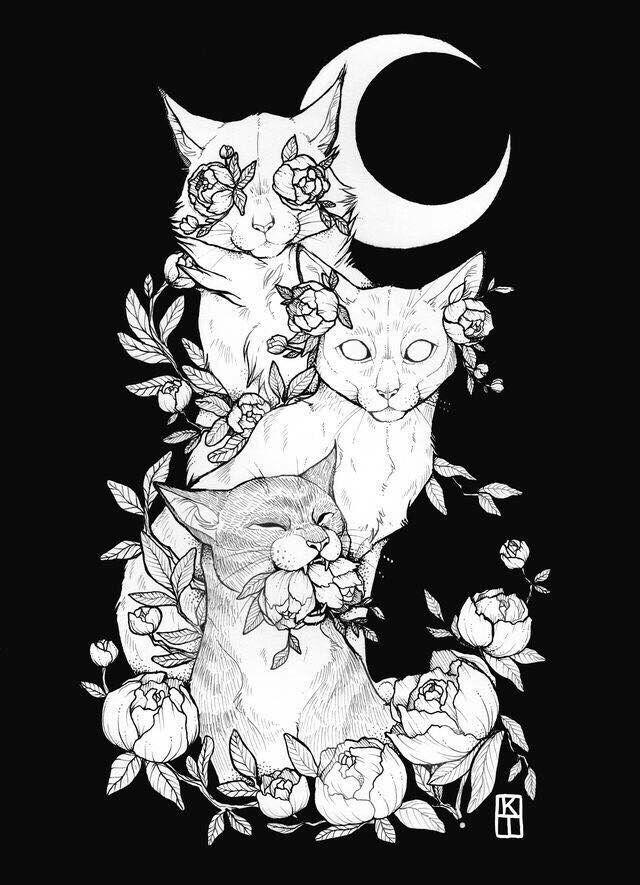 Katzenzeichnung – sehen Sie nichts Böses, hören Sie nichts Böses, sprechen Si…