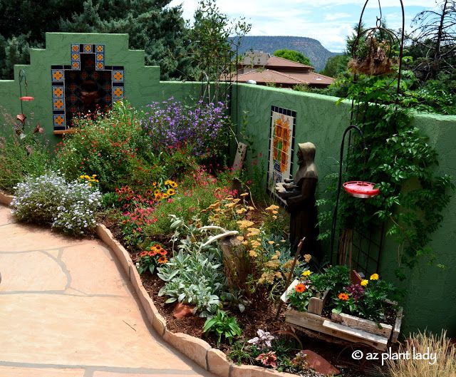 Picture A Garden Filled With Colorful Flowering Plants With Hummingbirds Hovering About Now Imagine That Small Space Gardening Planting Flowers Desert Garden