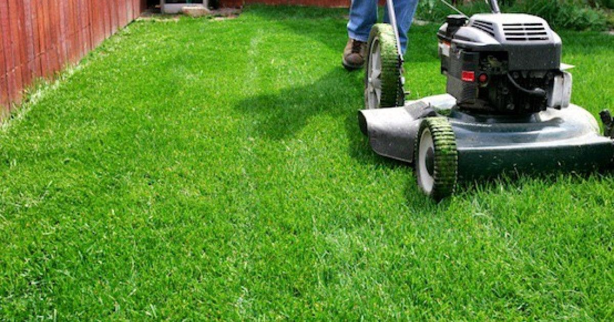Residential Lawn Maintenance Service Mississauga in 2020