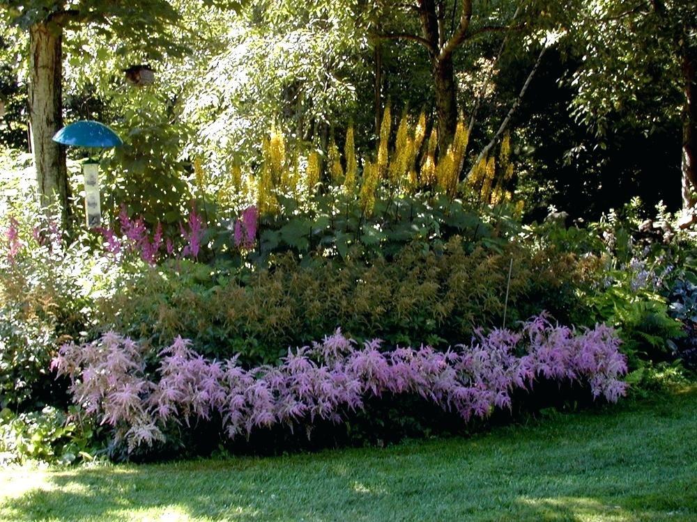 shade garden designs zone 5 zone 5 perennial garden design ...