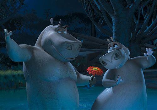 I Like Them Big I Like Them Chunky Madagascar Madagascar