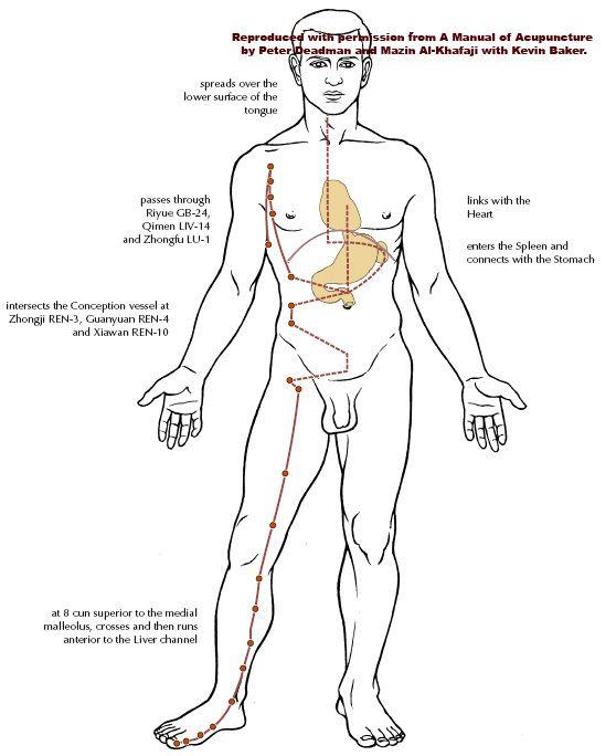 Pin on Acupuncture Medicine