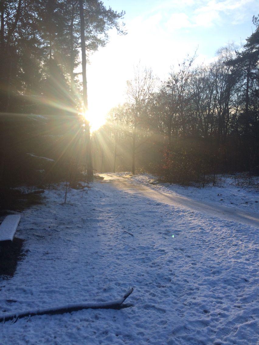 Zon en sneeuw!