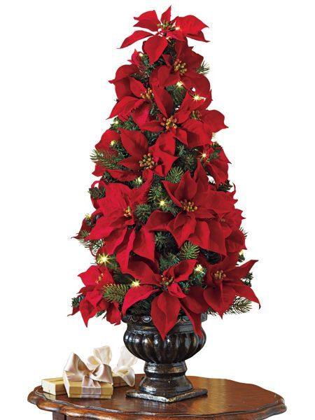 Pin By Claudia Regina On Santa Claus Is Coming To Town Poinsettia Tree Christmas Flowers Christmas Arrangements