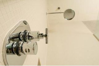 How to Get Rid of Mold on a Plaster Ceiling Above a Shower