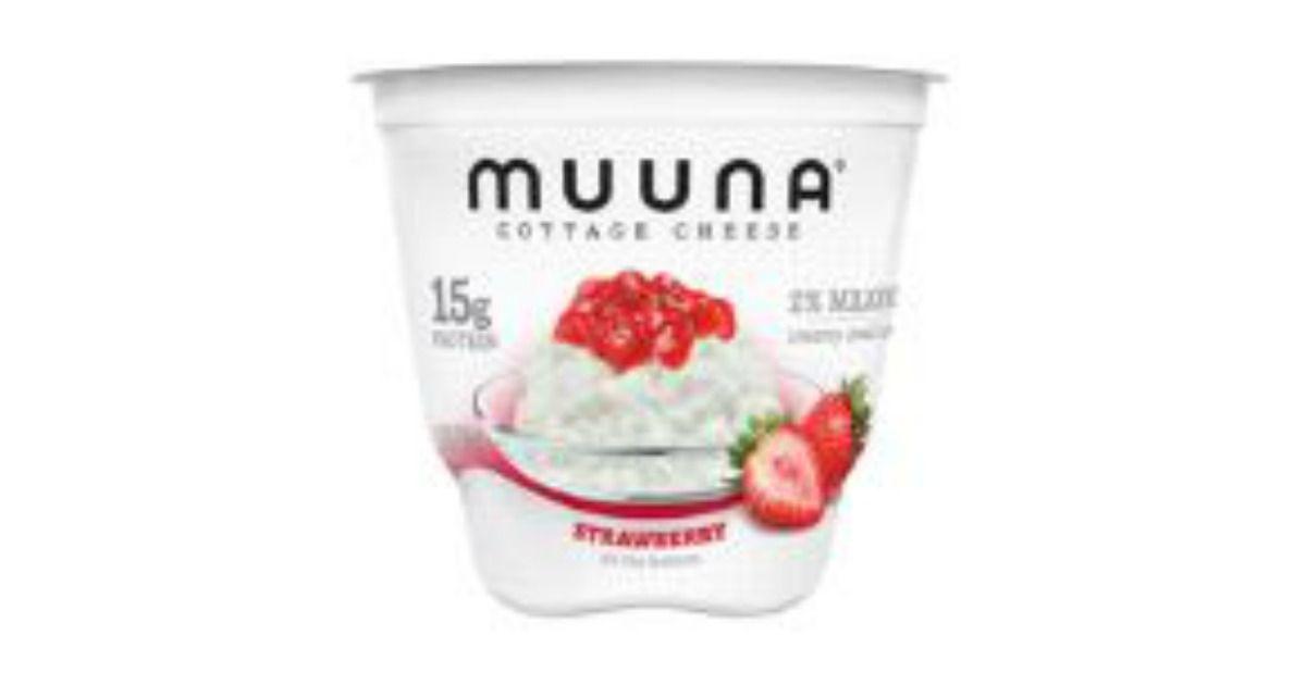 FREE Muuna Cottage Cheese Meijer Cottage cheese