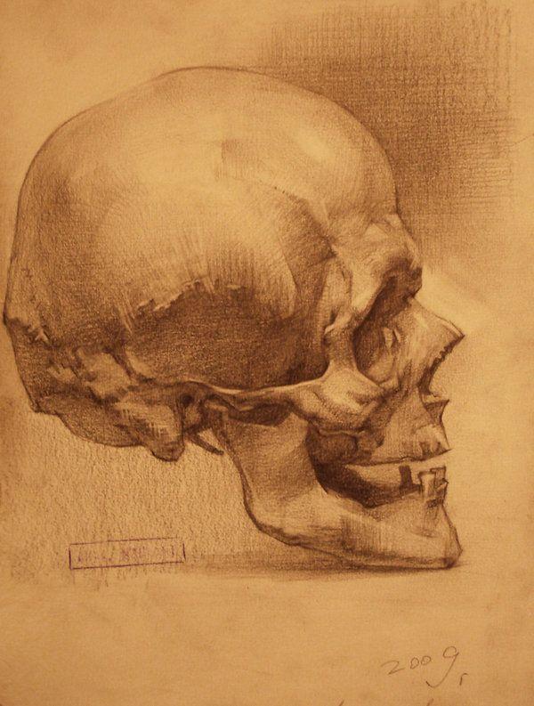 "theolduvaigorge: ""Human Anatomy by Ivan Laliashvili(Source: Ivan ..."