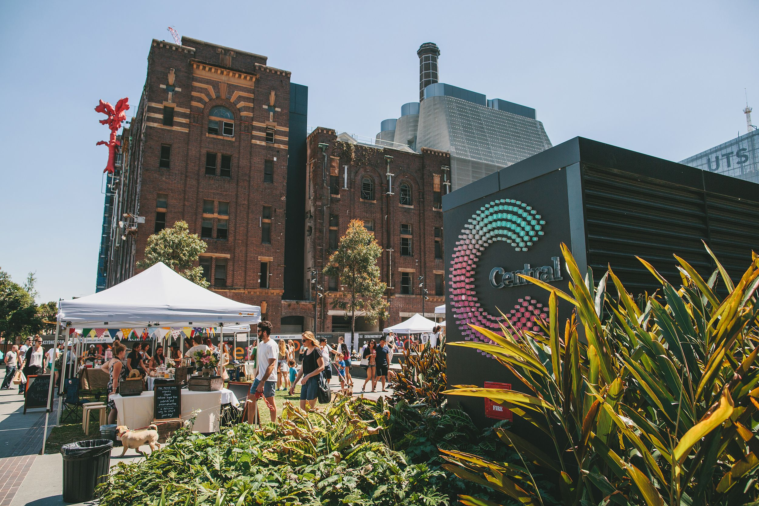 Brewery Yard Markets Chippendale