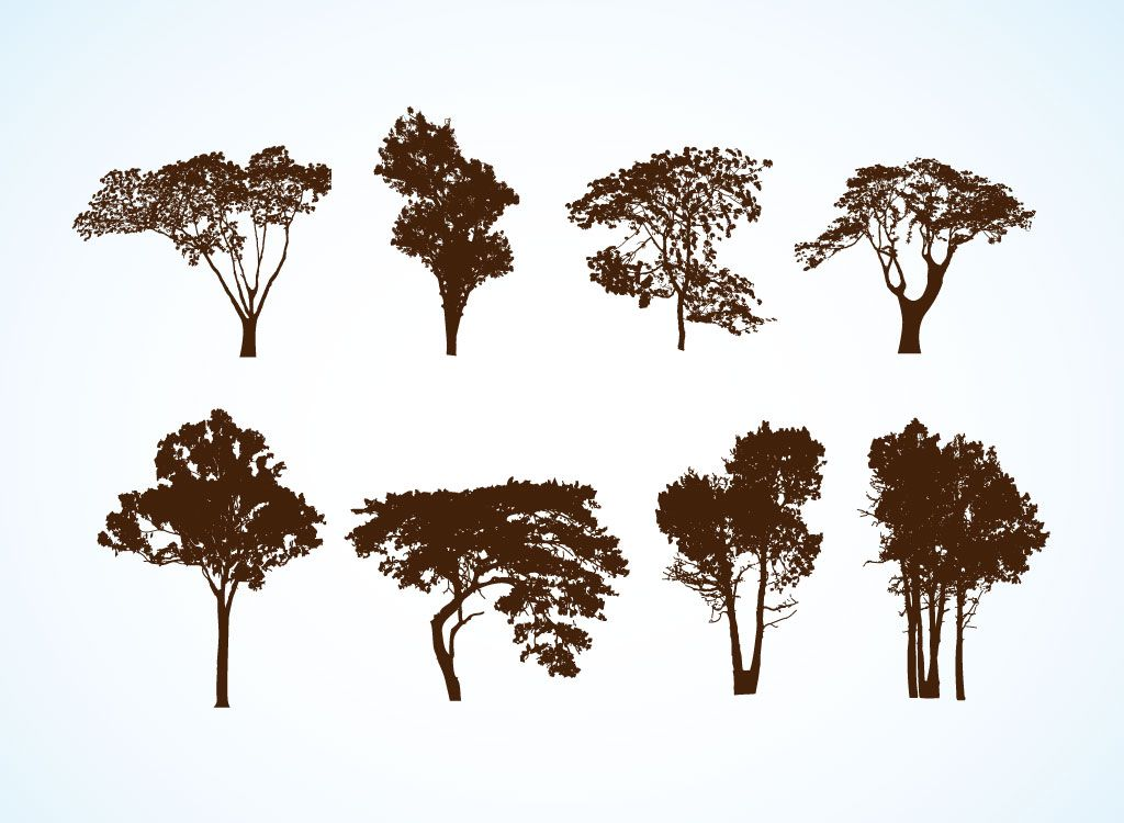 Vector Illustration Tree: Free Vector Trees. These Are Actually Free Easy Open In