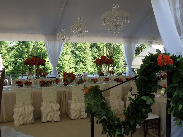 The French Tangerine: ~ tangerine wedding part 2 - chair covers