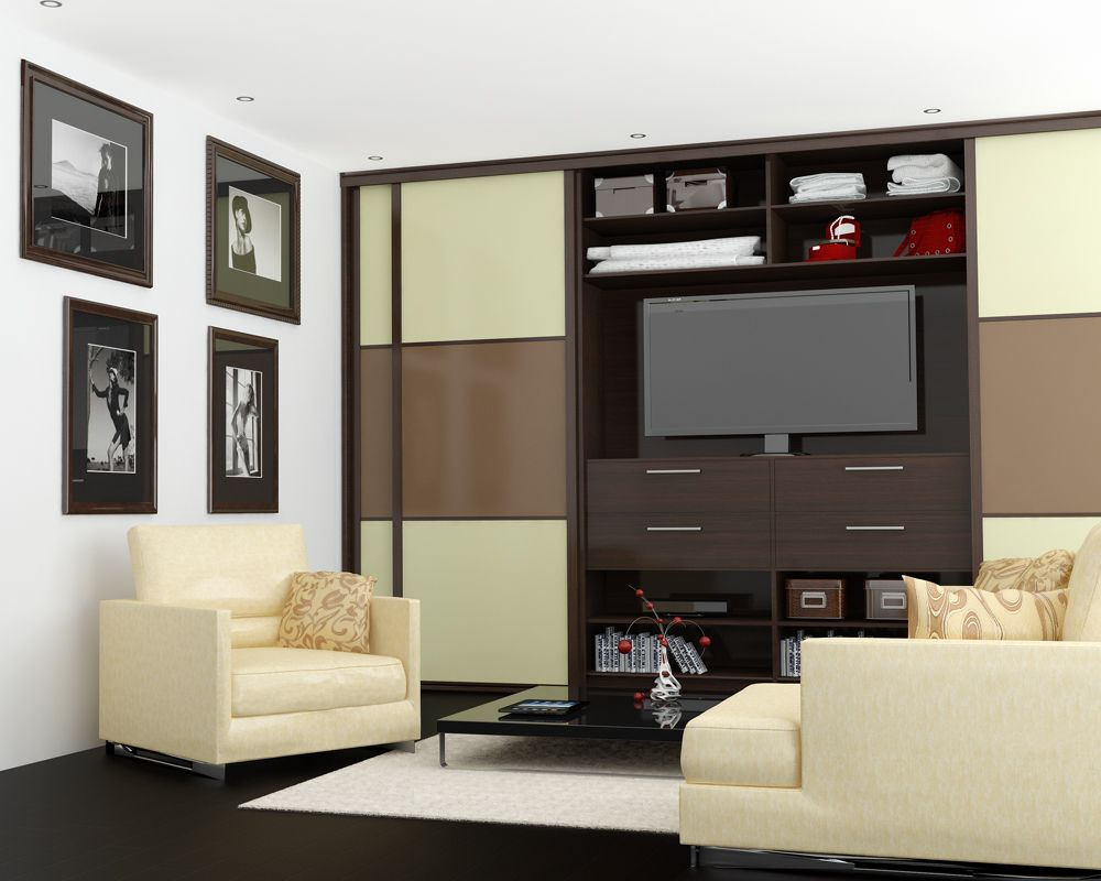 living room wardrobe with space for tv in the middle. design